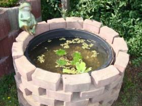 Miniteich Im Mortelkubel Seite 3 Teich Brunnen Schlauch Co